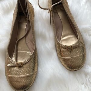 Late spade shoes